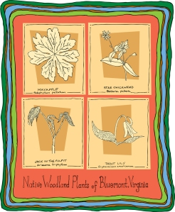 Congratulations to the 2013 artist whose artwork will displayed on our Bluemont Fair poster!